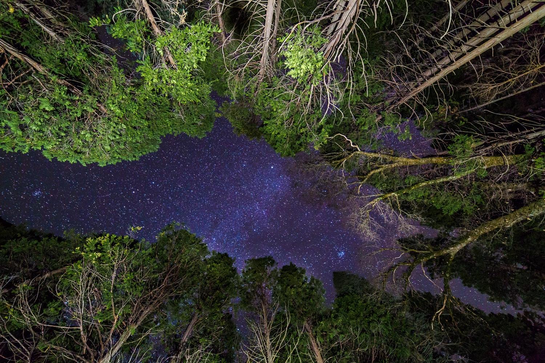 Night sky from Yosemite