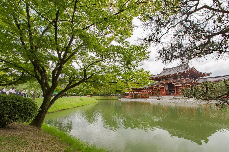 Byodoin Temple in Nara