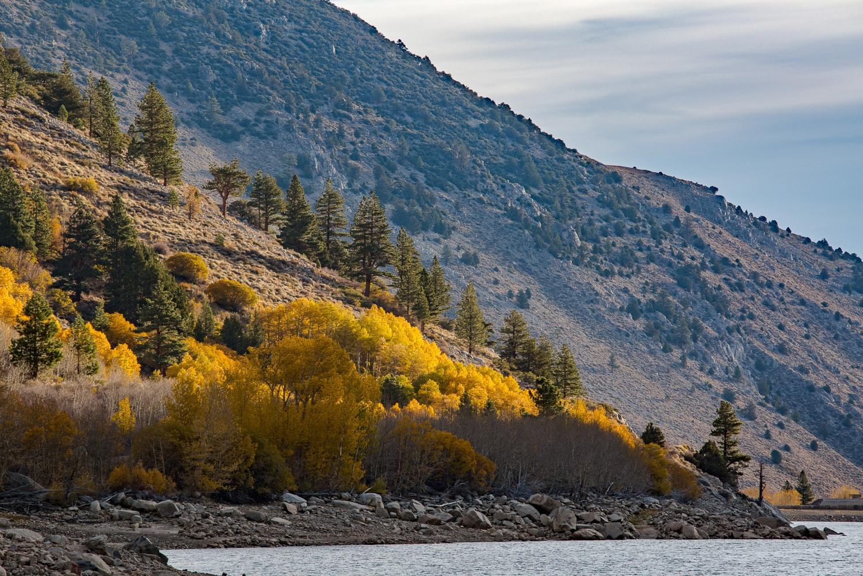 Fall colors along Lundy Lake