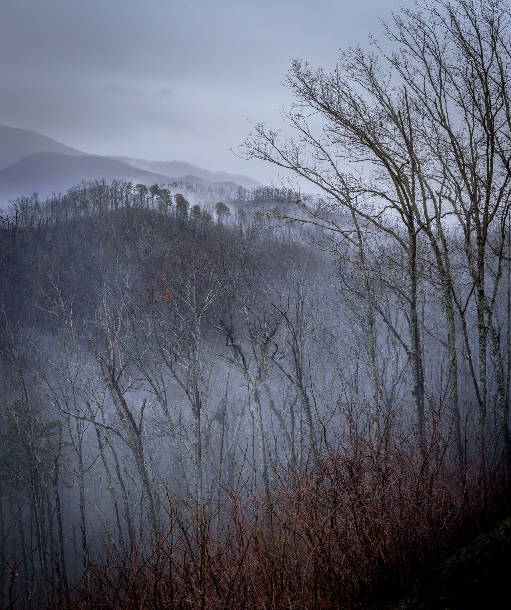 Misty mountains at Great Smoky Mountains National Park
